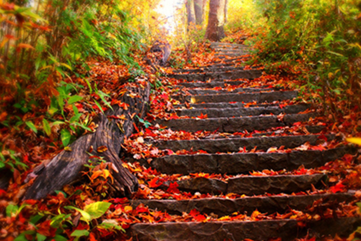 L'autunno nel piatto