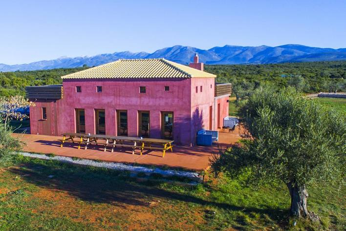 Greek cooking class and local lunch in an organic farm in laconia, greece!