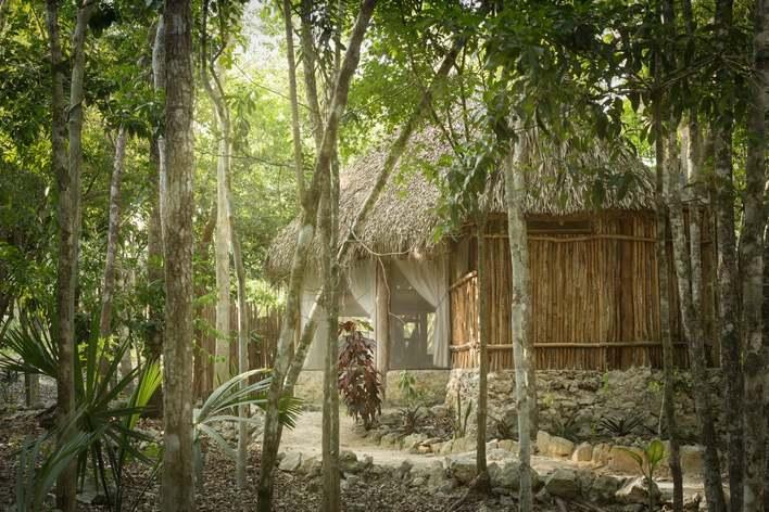 Brunch in the jungle - tulum