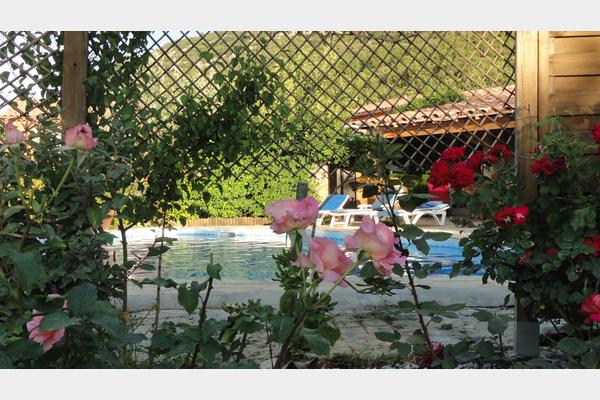 Les saveurs de provence artigues 83560 for Anchoiade maison