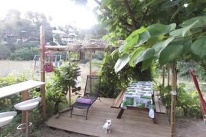 Eat with locals: Brunch au cabanon