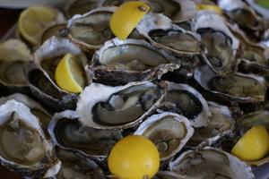 Eat with locals: Déjeuner méditerranéen en bord de mer